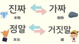 韓国 語 チンチャ